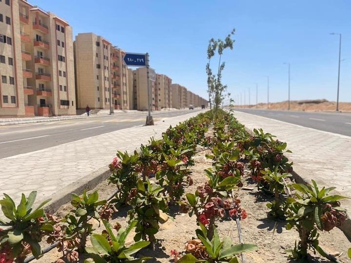 رئيس جهاز أكتوبر: الانتهاء من تنفيذ طريق شرق الواحة - copy